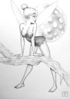 tinkerbell 02 by tom ross by lad-on