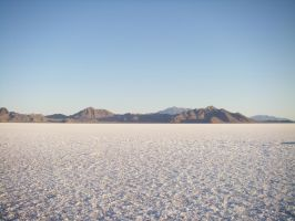 Salt Flats- 1492 by archambers