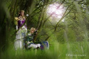 Zelda Cosplay - Shelter by Yesta-sensei