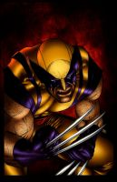 Wolverine Color by kiarakiller