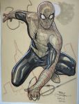 Spider-Man from NYCC 2015 by TerryDodson