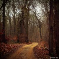 Magic road to eternity by Initio