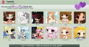 2011 Summary by YamPuff