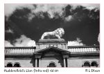 Huddersfield's Lion (infra red) rld 01 dasm by richardldixon