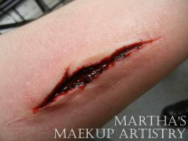 Deep Gash by Marthas-Makeup