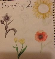 Sampling page 2 (two) flowers! by TheSilentArtist2225