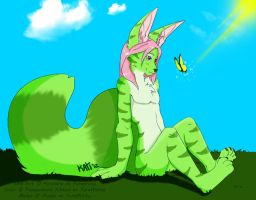 Hello, Butterfly by Candy-Akita