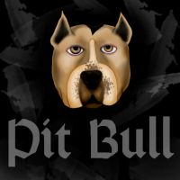 pit bull. by starlitefairy24
