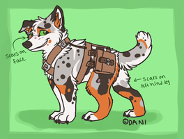 Canine Adoptable (Rhye) by ContradictingCats