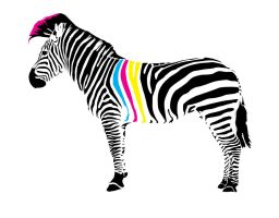 CMYK Zebra Shirt by crazyspacetime