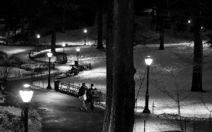 Central Park at night by Mjag