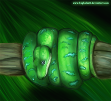 Ssssneaky sssnake by keyholeXII