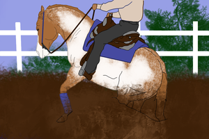 Simple Reining Training by Starcather9