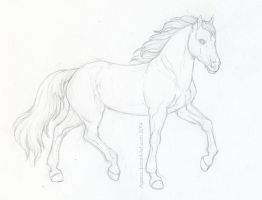 WIP Horse Sketch by Agaave