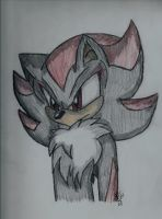 +Shadow the Hedgehog+ by MoonTiger456
