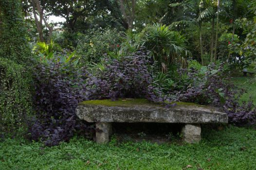 Mossy bench stock by bunnyofdoomstock