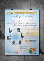 Max flow poster by shehbaz
