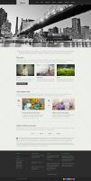 Glisseo Free Homepage PSD by elemis