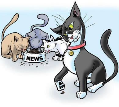 Do You Trust The News Media by Rogue5