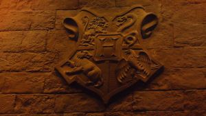 Hogwarts Crest on the Fireplace by hellonlegs