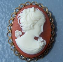 Broach - white lady close up by Hermit-stock