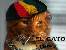 El Gato Lopez by Dragonfly929