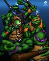 Teenage Mutant Ninja Turtles by adzign