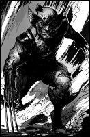 Wolverine by bumhand