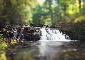 Mini Mosquito Falls by JessicaDobbs
