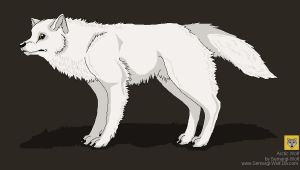 The Arctic Wolf by Semargl-Wolf