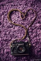Love photo! by belie-photo