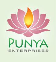 Punya Enterprises Logo by luke314pi