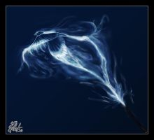 Patronus by Baringa-of-the-Wind