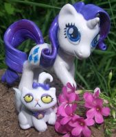 rarity presentation by melinaminotti
