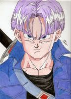 Trunks by Taiel
