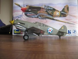 P-40B: 8th Pursuit Group: Side View by cloudyrainbow561