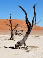 Namibia 10.2 by GreenMusic