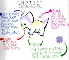 OLD Chaiset Guide by Cube-U