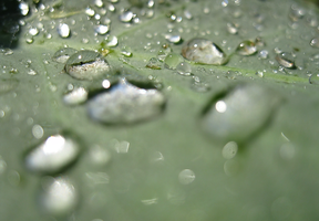 Complex Water Droplets by OneofakindKnight