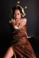 Javanese dress 2 by bumimanusiastock