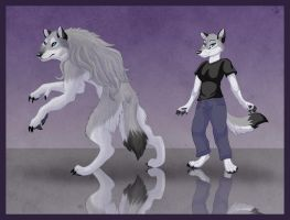 Werewolf and Anthro by WindWo1f
