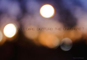 Do I Dare by KatieLindPhotography