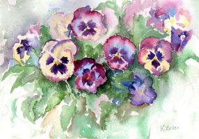 Pansies from life by karincharlotte