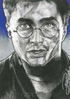 Harry Potter by machinehead11