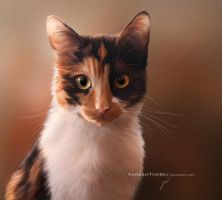 Calico Gaze by ThreshTheSky