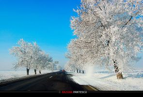 Winter roads 7 by razvanx
