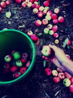 One Bucket Of Apples by IamMissOriginal