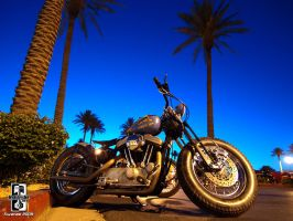 Old School Blue Bobber by Swanee3