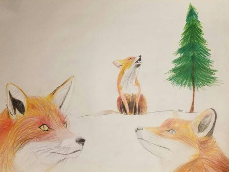 Foxes by jessienovak98