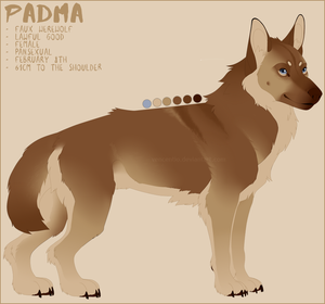 PADMA REF. SHEET by Vencentio